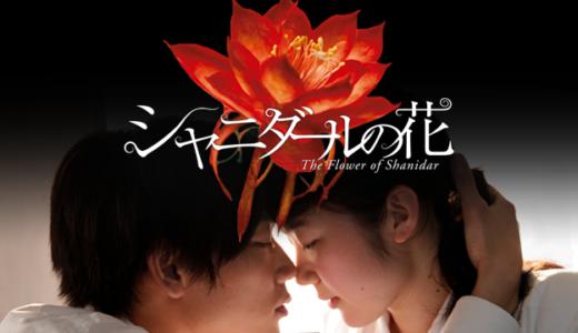 「シャニダールの花」のフル動画を無料で視聴する方法!