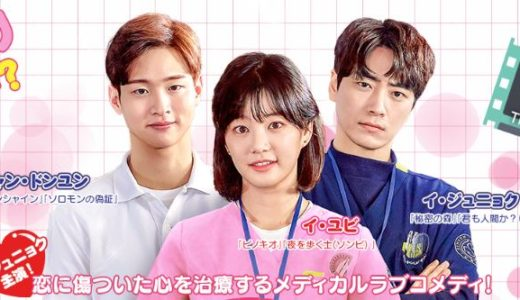 韓流ドラマ「ラブ・セラピー A POEM A DAY」の無料フル動画はHulu・amazon・Netflixで配信してる?