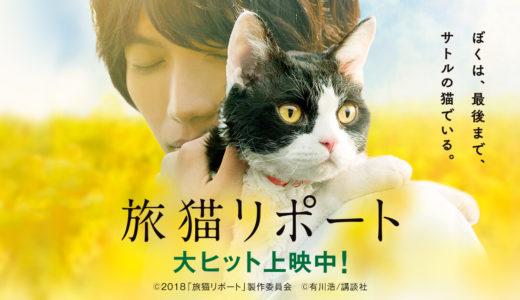 「旅猫リポート」の無料フル動画はHulu・amazon prime・Netflixで配信してる?