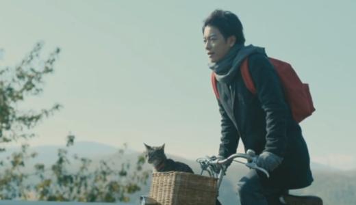 「世界から猫が消えたなら」の無料フル動画はHulu・amazon prime・Netflixで配信してる?