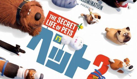 「ペット2」の無料フル動画はHulu・amazon prime・Netflixで配信してる?